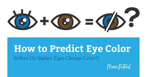 do babies eye color change when do babies change color will they stay blue