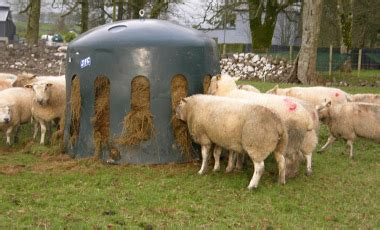 feeders   sheep haybell
