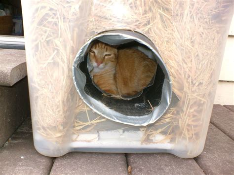 homemade cat house for outside homemade cat houses for outside www imgkid com the image kid has it