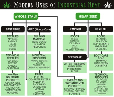 How Many Trees Does It Take To Make Paper - hemp uses ireland cannabis information