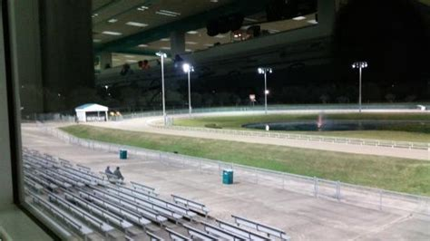 gulf greyhound park lights an almost empty seating area picture of gulf greyhound