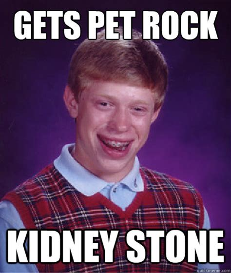 Kidney Stones Meme - gets pet rock kidney stone misc quickmeme