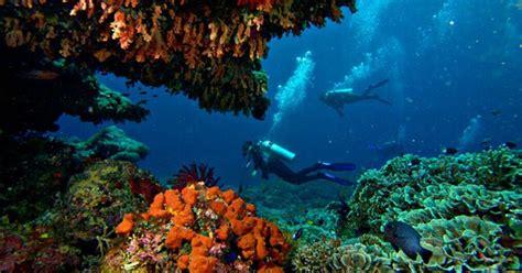 dive di diving nusa lembongan bali two fish divers
