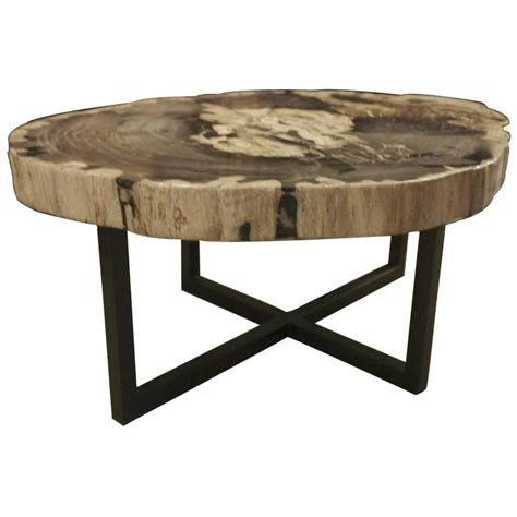 petrified wood large thick coffee table