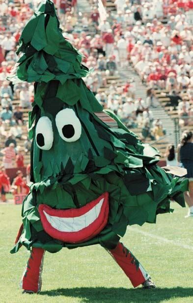 1 the stanford tree realclearsports - Tree Mascot