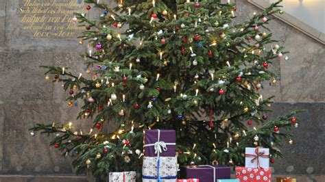 row over nottingham council plans to sell christmas trees