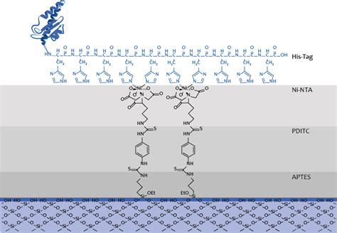 ni nta team freiburg project surface chemistry 2015 igem org