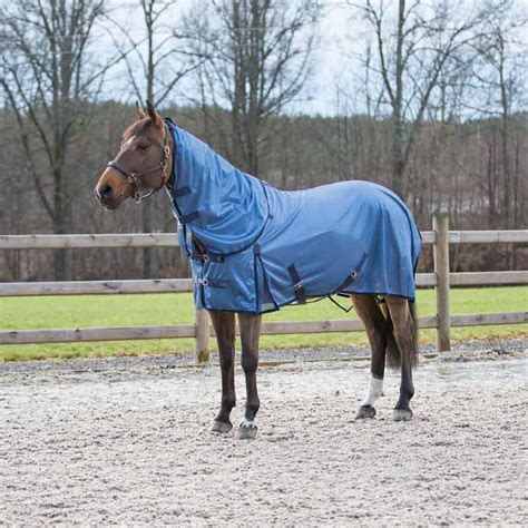 Different Types Of Rugs For Horses Different Types Of Horse Rugs Blankets Guide Horses Mad