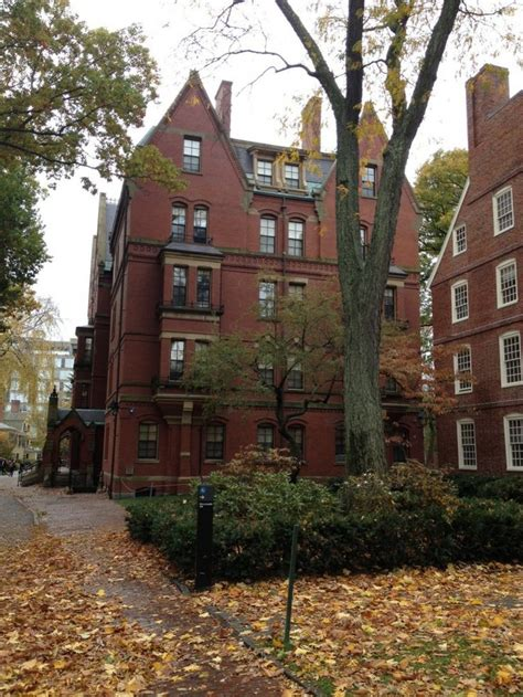 Cpa Harvard Mba by Best 25 Harvard Ideas On Harvard