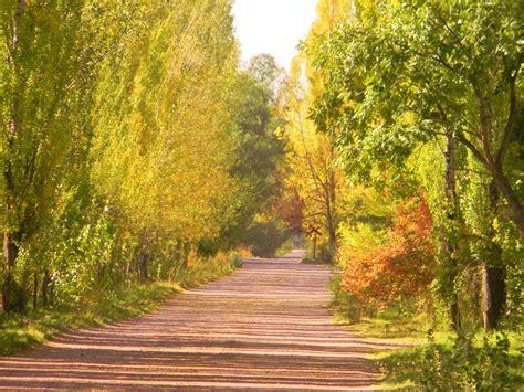 el camino de las el camino de la alameda y del alma cruzdelsur