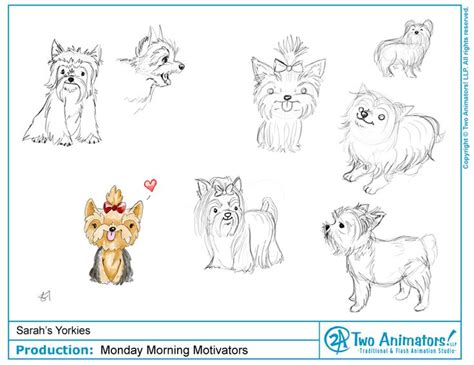 how to draw a yorkie step by step how to draw a yorkie search animation illustration how to