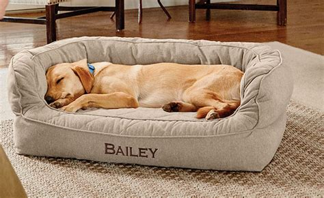 orvis dog couch memory foam couch dog bed orvis memory foam couch dog