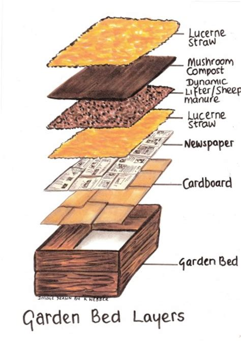 How To Make Raised Garden Beds For Vegetables The How To Fill A Raised Vegetable Garden Bed