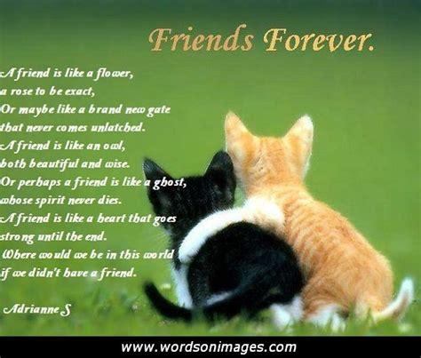 valentines quotes for friends friendship quotes quotesgram