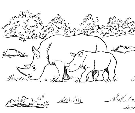 rhino coloring page rhino coloring page bell