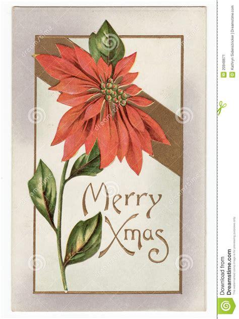 vintage christmas poinsettia postcard stock illustration image