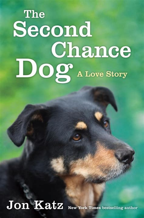 second chance dogs author jon katz shares his books journal entries titles such as days in