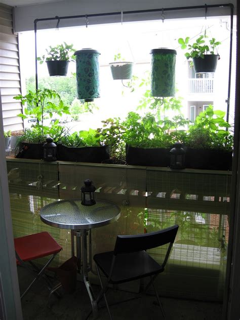 Balcony Vegetable Garden   Growing A Vegetable Garden On A