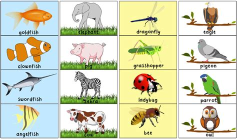 printable animal pictures for toddlers matching animal halves printable activity totschooling