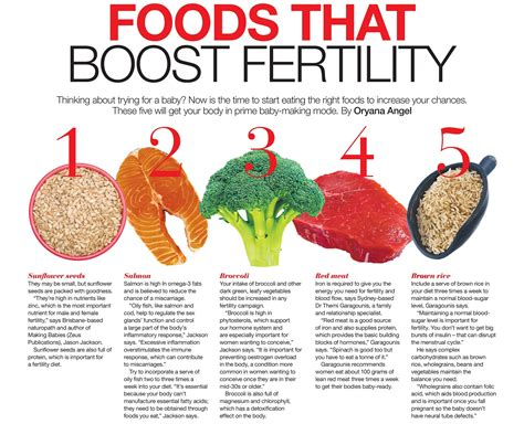 foods for fertility foods oryana