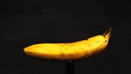 a tiny banana imgur a 50 cal bullet going through a banana in slow motion gif