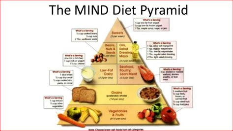 diet for the mind the science on what to eat to prevent alzheimer s and cognitive decline from the creator of the mind diet books here are the best diets for weight loss 40