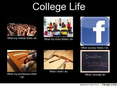 funny college memes  students