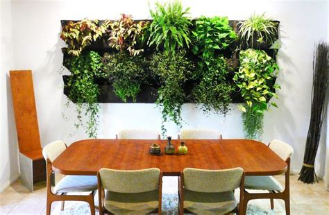 Wooly Pocket Living Wall Planter by 1000 Ideas About Living Wall Planter On Garden Wall Designs Vertical Garden Wall