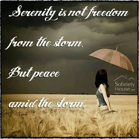 The Of Living Peace And Freedom In The Here And Now serenity is not freedom from the its peace living