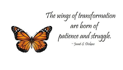 butterfly sayings butterfly quotes part 1 weneedfun