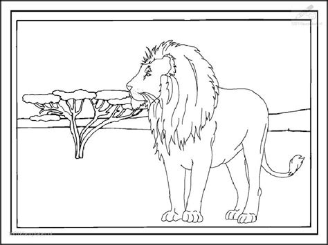 lions head coloring pages