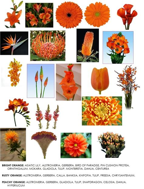 list of fall flowers color series orange flowers for weddings dahlia floral