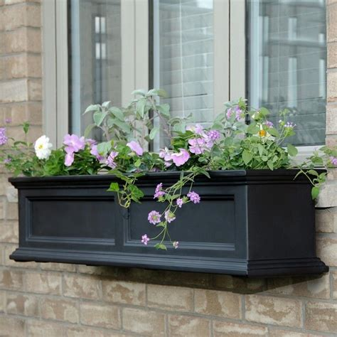 window box lowes new mayne fairfield 48 quot window box outdoor flower planter