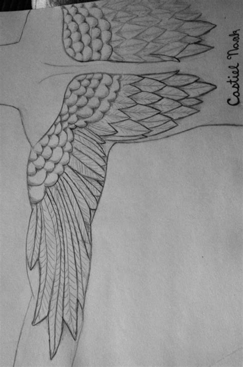 anatomically correct wing tattoo anatomically correct way to wings by