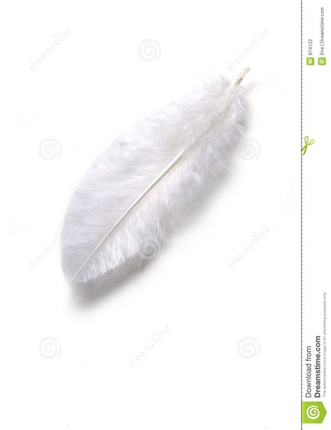 preteen girl with white feathers stock image image of white feather stock photo image of thin subtile weak