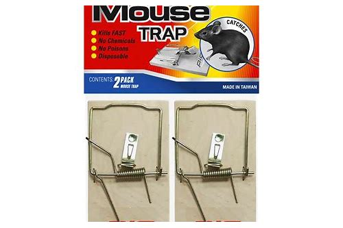 mouse trap game coupon