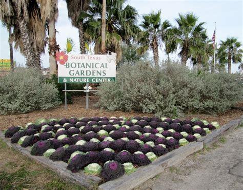 Corpus Christi Botanical Gardens Garden Ftempo Botanical Gardens Corpus Christi