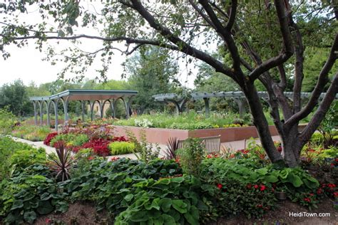 denver botanic gardens saay hours garden ftempo