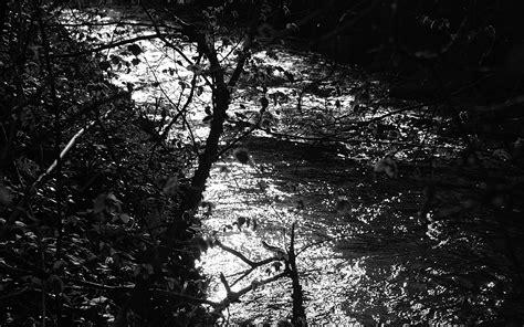 imagenes en blanco y negro hispter fondos de pantalla de arboles y rio fotografia blanco y