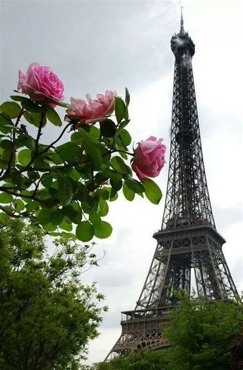 Oki Pink Ac 172 best par 237 s images on tour eiffel bonjour