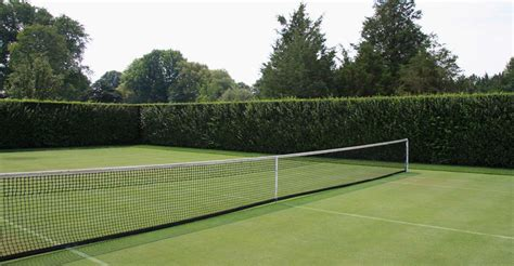 backyard tennis courts spotlight on perry guillot grasses and tennis