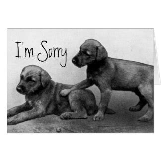 im sorry puppy apology gifts on zazzle