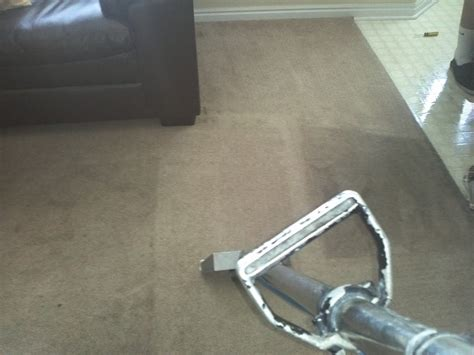 upholstery cleaning utah alpine professional carpet care carpet cleaning in cedar