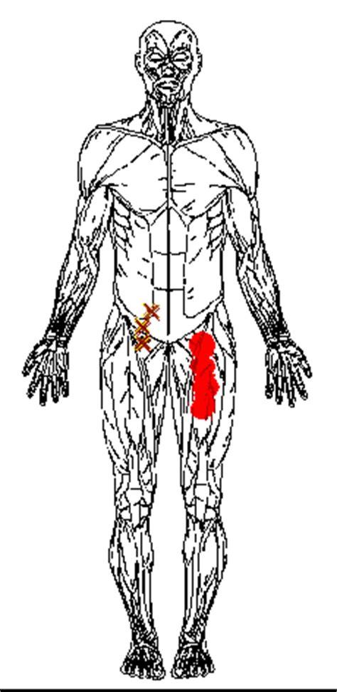 tremori interni tremori interni basso ventre idea immagine home