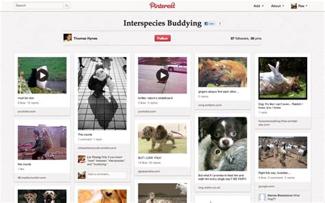 top pinterest boards best pinterest boards 27 gorgeous pinboards you need to