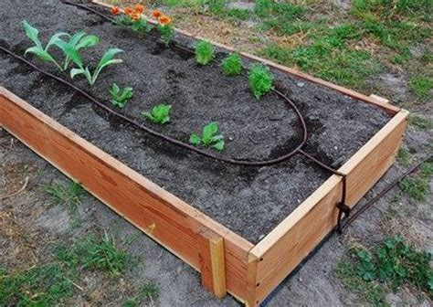 raised bed irrigation cheap irrigating raised bed gardens urban landscape and