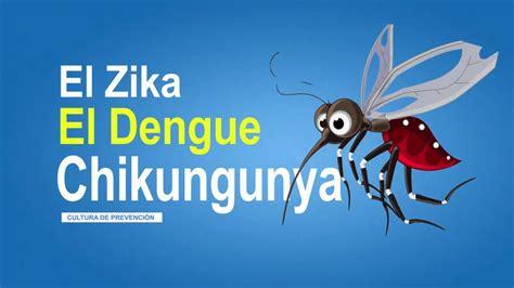imagenes memes del zika el zika el dengue y la chikungunya c 243 mo se trasmiten