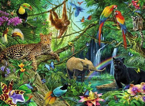 the best jungle best 25 jungle ideas on optical