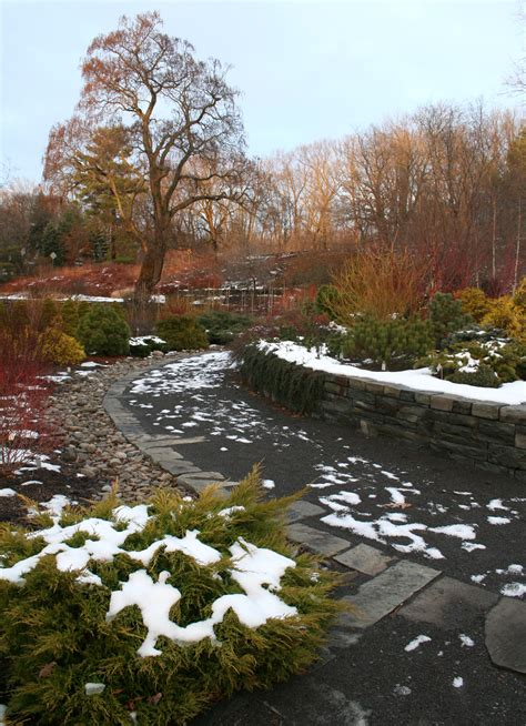 Winter Garden by Cornell Plantations Winter Garden Ellis Hollow