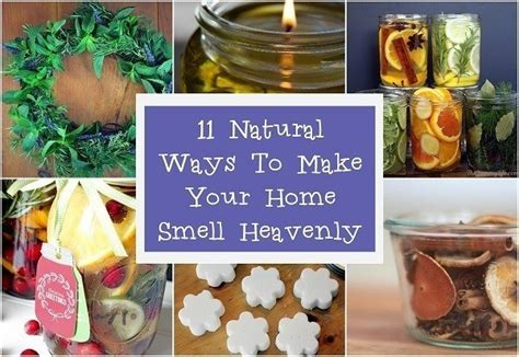 how to make your room smell how to make your home smell heavenly diycraftsguru